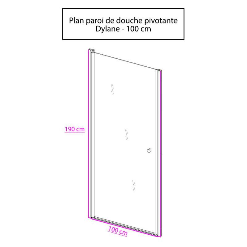 Porte de douche pivotante DYLANE sans cadre 100 cm - 6mm